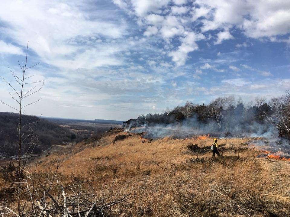Prescribed fire being managed by trained professionals