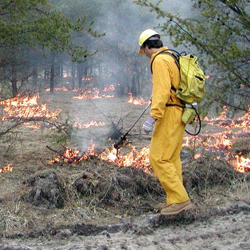 Man conducting a controller burn