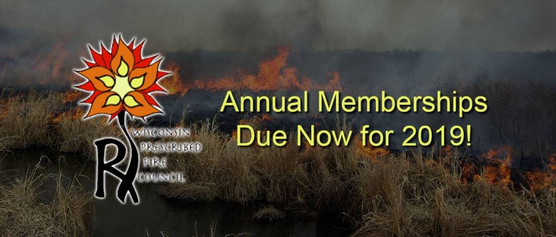 New Membership Dues in 2019
