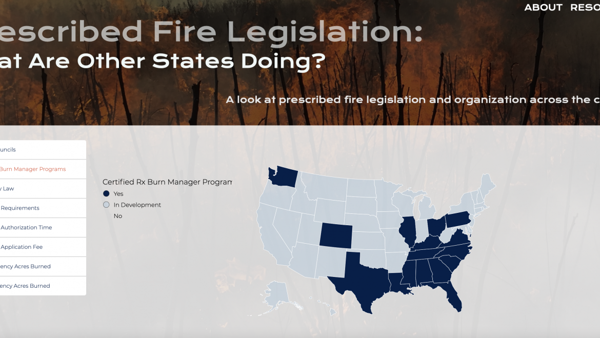 How Good Fire Became Routine in the South
